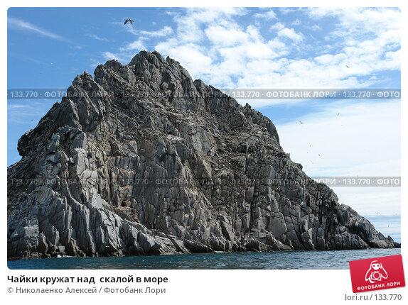 Купить «Чайки кружат над  скалой в море», фото № 133770, снято 27 июня 2006 г. (c) Николаенко Алексей / Фотобанк Лори