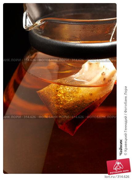 Чайник, фото № 314626, снято 7 декабря 2005 г. (c) Кравецкий Геннадий / Фотобанк Лори