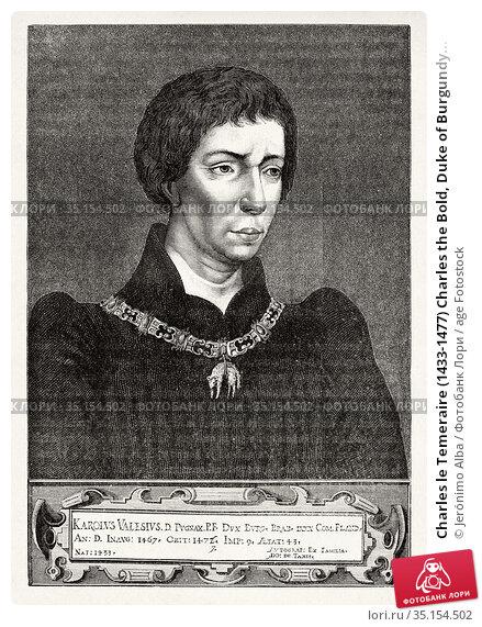 Charles le Temeraire (1433-1477) Charles the Bold, Duke of Burgundy... Стоковое фото, фотограф Jerónimo Alba / age Fotostock / Фотобанк Лори