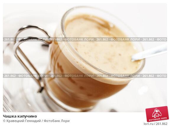 Чашка капучино, фото № 261862, снято 1 сентября 2005 г. (c) Кравецкий Геннадий / Фотобанк Лори