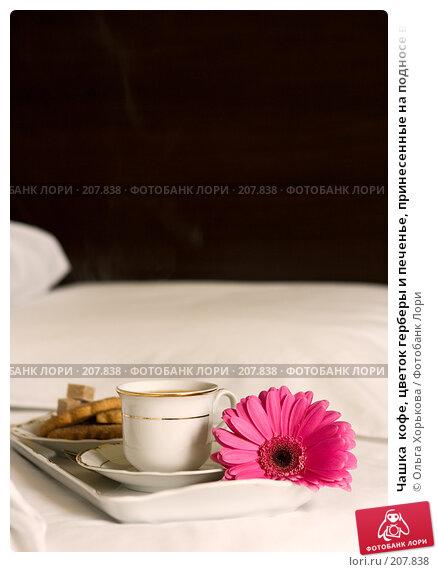 Чашка  кофе, цветок герберы и печенье, принесенные на подносе в постель, фото № 207838, снято 14 февраля 2008 г. (c) Ольга Хорькова / Фотобанк Лори