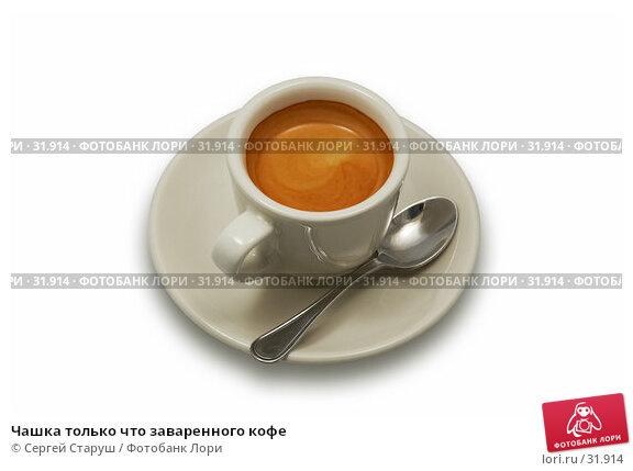 Чашка только что заваренного кофе, фото № 31914, снято 30 сентября 2006 г. (c) Сергей Старуш / Фотобанк Лори