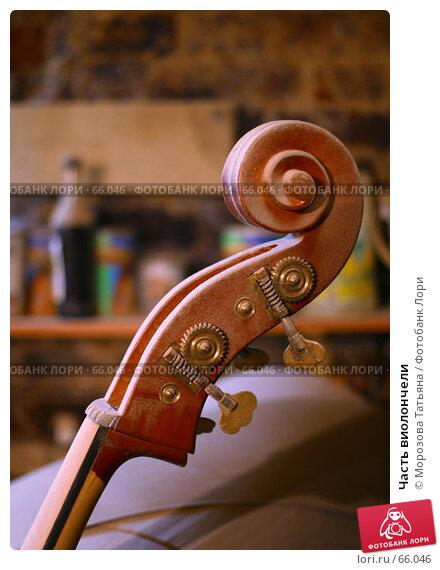Часть виолончели, фото № 66046, снято 13 декабря 2005 г. (c) Морозова Татьяна / Фотобанк Лори