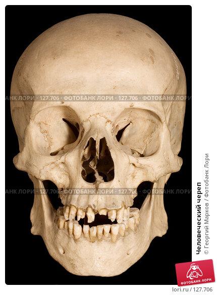 Человеческий череп, фото № 127706, снято 30 июня 2006 г. (c) Георгий Марков / Фотобанк Лори