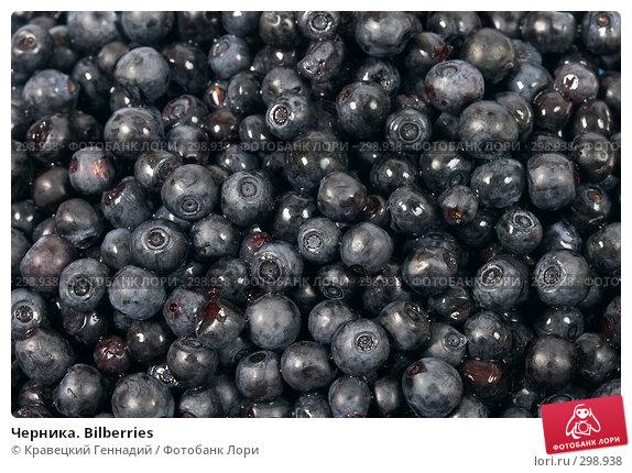 Черника. Bilberries, фото № 298938, снято 1 августа 2004 г. (c) Кравецкий Геннадий / Фотобанк Лори