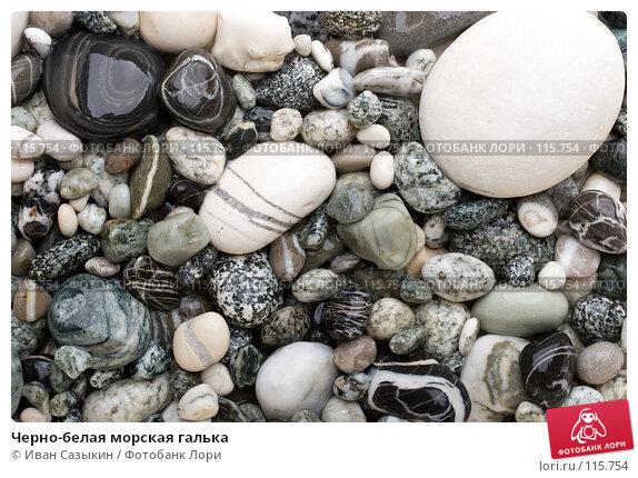 Черно-белая морская галька, фото № 115754, снято 9 ноября 2007 г. (c) Иван Сазыкин / Фотобанк Лори