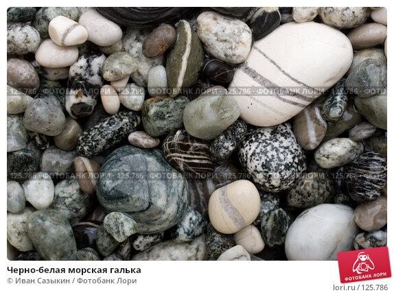 Купить «Черно-белая морская галька», фото № 125786, снято 9 ноября 2007 г. (c) Иван Сазыкин / Фотобанк Лори