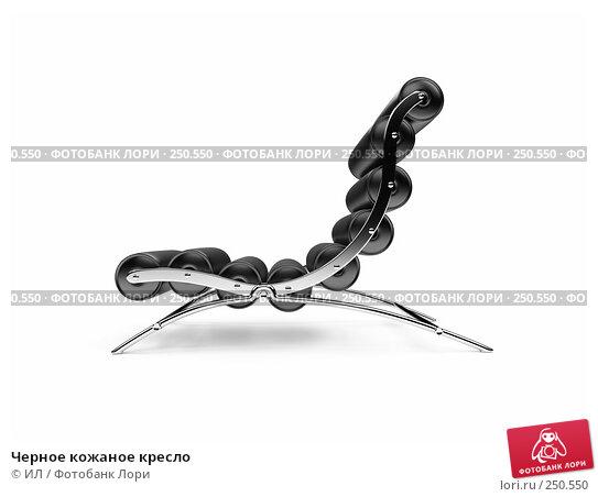 Купить «Черное кожаное кресло», иллюстрация № 250550 (c) ИЛ / Фотобанк Лори