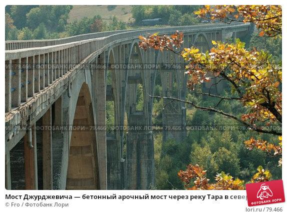 Черногорский мост Джурджевича Тара, фото № 79466, снято 28 августа 2007 г. (c) Fro / Фотобанк Лори