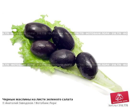 Черные маслины на листе зеленого салата, фото № 318778, снято 15 марта 2007 г. (c) Анатолий Заводсков / Фотобанк Лори