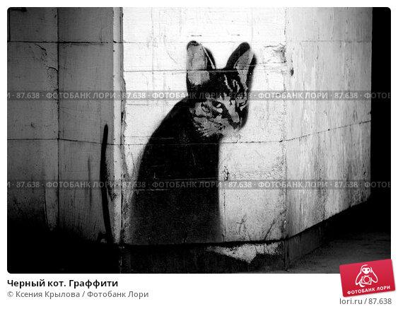 Черный кот. Граффити, фото № 87638, снято 30 марта 2007 г. (c) Ксения Крылова / Фотобанк Лори