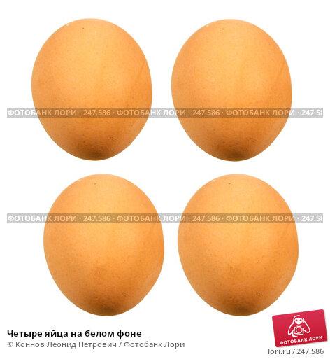 Четыре яйца на белом фоне, фото № 247586, снято 19 сентября 2017 г. (c) Коннов Леонид Петрович / Фотобанк Лори