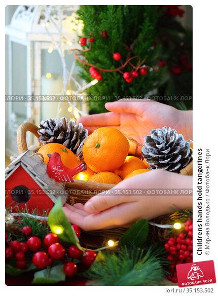 Childrens hands hold tangerines. Стоковое фото, фотограф Марина Володько / Фотобанк Лори