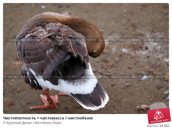 Чистоплотность = чистомасса / чистообъем, фото № 34462, снято 4 марта 2007 г. (c) Крупнов Денис / Фотобанк Лори