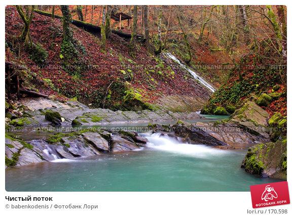 Чистый поток, фото № 170598, снято 4 января 2006 г. (c) Бабенко Денис Юрьевич / Фотобанк Лори