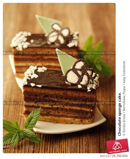 Купить «Chocolate sponge cake.», фото № 28700694, снято 28 июня 2018 г. (c) easy Fotostock / Фотобанк Лори