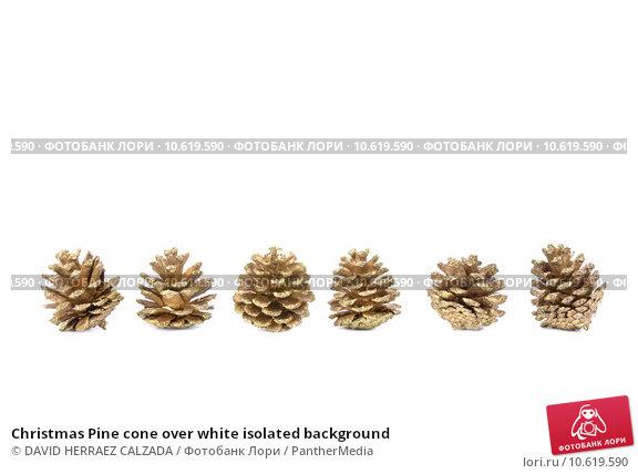 Christmas Pine cone over white isolated background. Стоковое фото, фотограф DAVID HERRAEZ CALZADA / PantherMedia / Фотобанк Лори