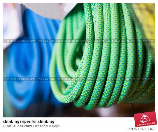 Купить «climbing ropes for climbing», фото № 29714070, снято 24 февраля 2017 г. (c) Татьяна Яцевич / Фотобанк Лори