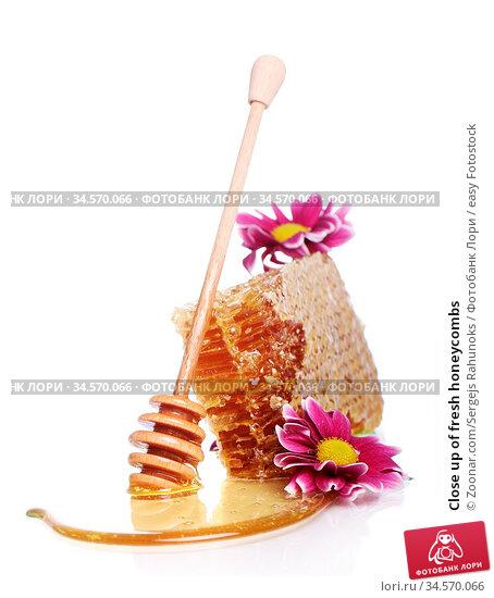 Close up of fresh honeycombs. Стоковое фото, фотограф Zoonar.com/Sergejs Rahunoks / easy Fotostock / Фотобанк Лори