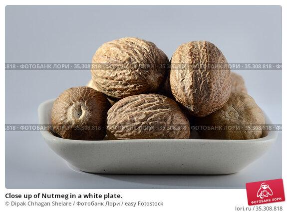 Close up of Nutmeg in a white plate. Стоковое фото, фотограф Dipak Chhagan Shelare / easy Fotostock / Фотобанк Лори