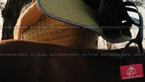 Close up view of horse's back on which young blonde is trying to put the yellow saddle slow motion. Стоковое видео, видеограф Denis Mishchenko / Фотобанк Лори