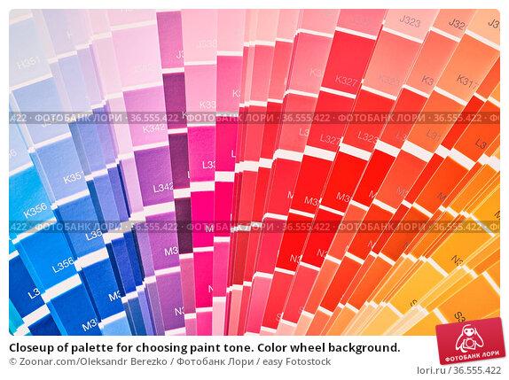 Closeup of palette for choosing paint tone. Color wheel background. Стоковое фото, фотограф Zoonar.com/Oleksandr Berezko / easy Fotostock / Фотобанк Лори