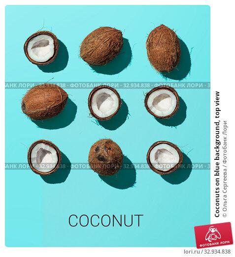 Купить «Coconuts on blue background, top view», фото № 32934838, снято 1 июля 2019 г. (c) Ольга Сергеева / Фотобанк Лори