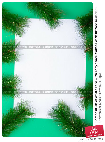 Composition of white card with copy space framed with fir tree branches on green background. Стоковое фото, агентство Wavebreak Media / Фотобанк Лори
