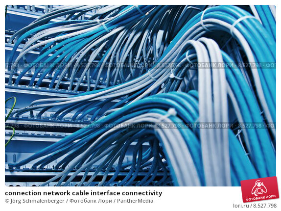 Купить «connection network cable interface connectivity», фото № 8527798, снято 21 марта 2019 г. (c) PantherMedia / Фотобанк Лори