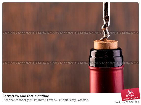 Corkscrew and bottle of wine. Стоковое фото, фотограф Zoonar.com/Serghei Platonov / easy Fotostock / Фотобанк Лори