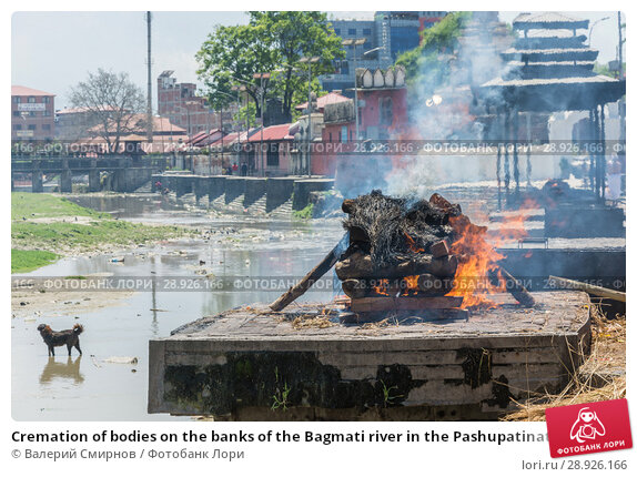Купить «Cremation of bodies on the banks of the Bagmati river in the Pashupatinath Temple 13 April 2018, Kathmandu, Nepal», фото № 28926166, снято 13 апреля 2018 г. (c) Валерий Смирнов / Фотобанк Лори