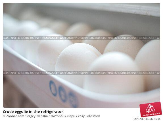 Crude eggs lie in the refrigerator. Стоковое фото, фотограф Zoonar.com/Sergey Nepsha / easy Fotostock / Фотобанк Лори