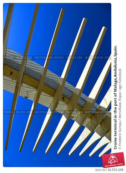 Cruise terminal in the port of Malaga,Andalusia,Spain. Стоковое фото, фотограф Frederic Soreau / age Fotostock / Фотобанк Лори