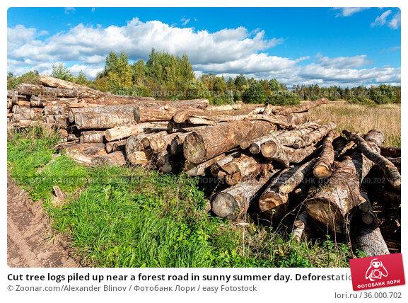 Cut tree logs piled up near a forest road in sunny summer day. Deforestation... Стоковое фото, фотограф Zoonar.com/Alexander Blinov / easy Fotostock / Фотобанк Лори