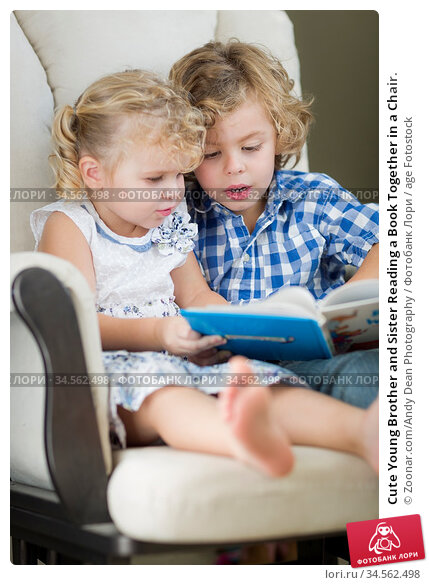 Cute Young Brother and Sister Reading a Book Together in a Chair. Стоковое фото, фотограф Zoonar.com/Andy Dean Photography / age Fotostock / Фотобанк Лори
