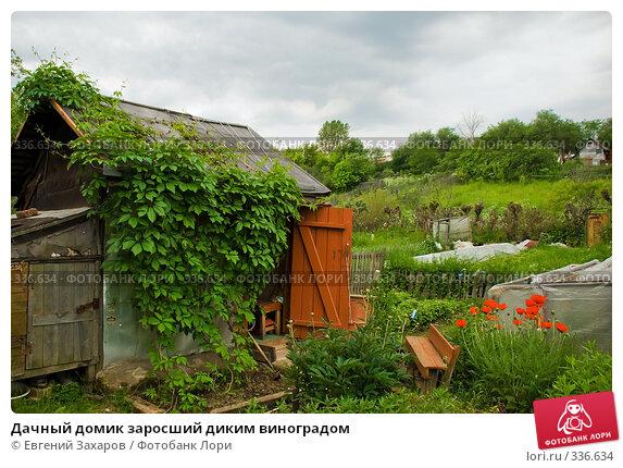 Дачный домик заросший диким виноградом, фото № 336634, снято 21 июня 2008 г. (c) Евгений Захаров / Фотобанк Лори