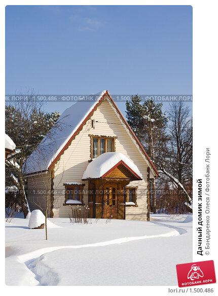 Купить «Дачный домик зимой», фото № 1500486, снято 23 февраля 2010 г. (c) Бондаренко Олеся / Фотобанк Лори