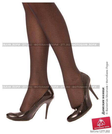 Дамские ножки, фото № 277202, снято 19 апреля 2008 г. (c) Валентин Мосичев / Фотобанк Лори