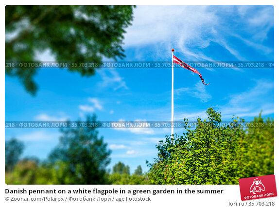 Danish pennant on a white flagpole in a green garden in the summer. Стоковое фото, фотограф Zoonar.com/Polarpx / age Fotostock / Фотобанк Лори
