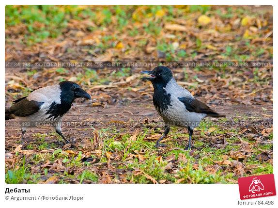Дебаты, фото № 84498, снято 18 октября 2006 г. (c) Argument / Фотобанк Лори