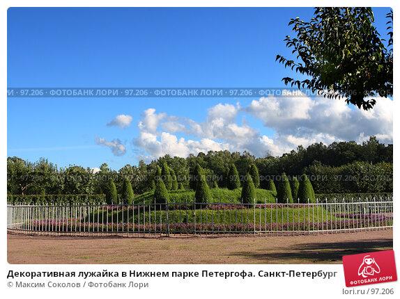 Купить «Декоративная лужайка в Нижнем парке Петергофа. Санкт-Петербург», фото № 97206, снято 5 сентября 2007 г. (c) Максим Соколов / Фотобанк Лори