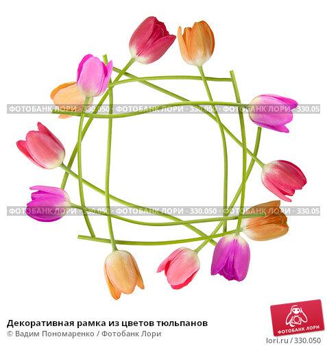 Декоративная рамка из цветов тюльпанов, фото № 330050, снято 27 мая 2008 г. (c) Вадим Пономаренко / Фотобанк Лори