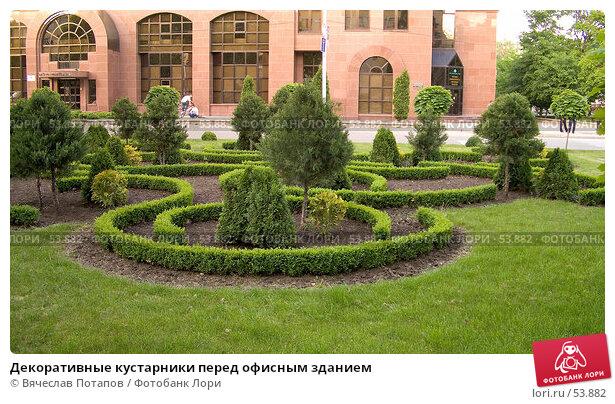 Декоративные кустарники перед офисным зданием, фото № 53882, снято 25 мая 2007 г. (c) Вячеслав Потапов / Фотобанк Лори