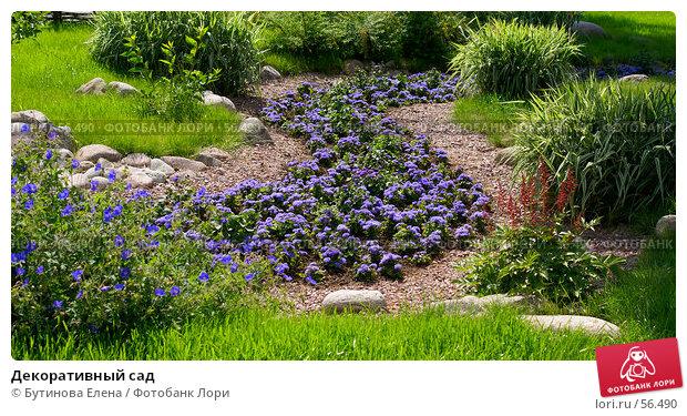 Декоративный сад, фото № 56490, снято 24 июня 2007 г. (c) Бутинова Елена / Фотобанк Лори