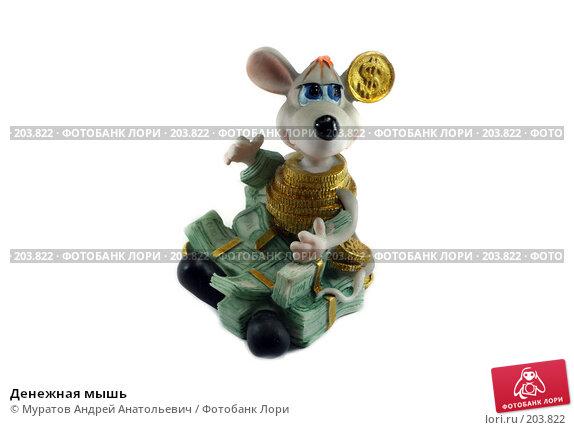 Денежная мышь, фото № 203822, снято 16 февраля 2008 г. (c) Муратов Андрей Анатольевич / Фотобанк Лори