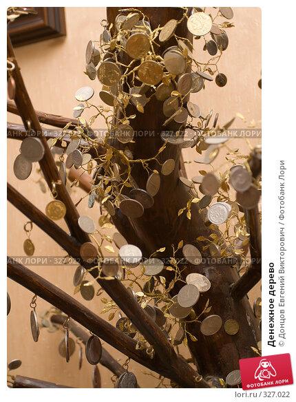 Купить «Денежное дерево», фото № 327022, снято 23 февраля 2008 г. (c) Донцов Евгений Викторович / Фотобанк Лори
