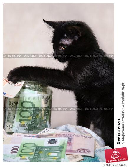 Деньги и кот, фото № 247002, снято 9 апреля 2008 г. (c) Морозова Татьяна / Фотобанк Лори