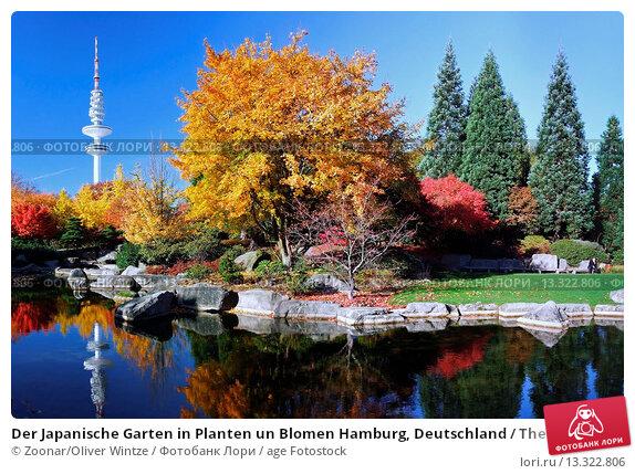 Der japanische garten in planten un blomen hamburg - Japanische garten deutschland ...