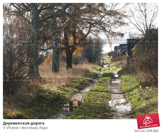 Деревенская дорога, фото № 234062, снято 28 октября 2004 г. (c) VPutnik / Фотобанк Лори