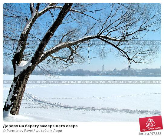 Дерево на берегу замерзшего озера, фото № 97358, снято 12 февраля 2007 г. (c) Parmenov Pavel / Фотобанк Лори